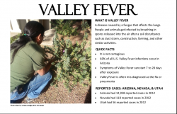 Valley Fever_image